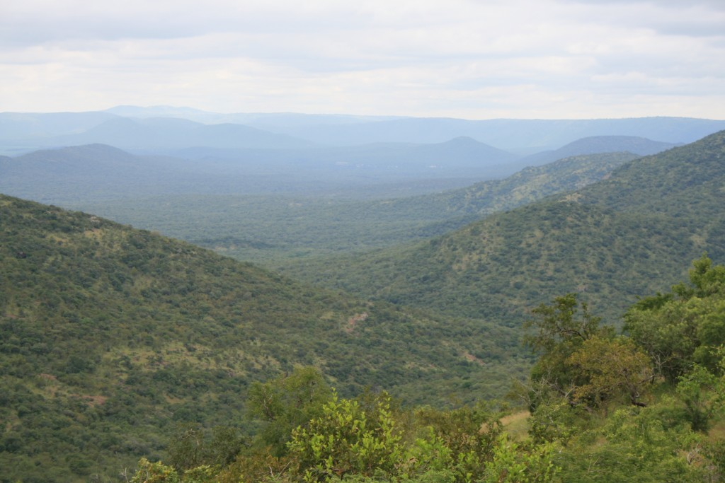 Mlawula-Nature-Reserve-1024x683 10 of The Very Best Places to Visit in Swaziland